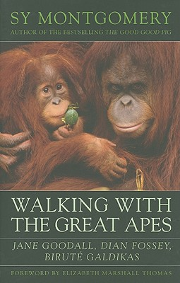 Walking with the Great Apes By Montgomery, Sy/ Thomas, Elizabeth Marshall (FRW)